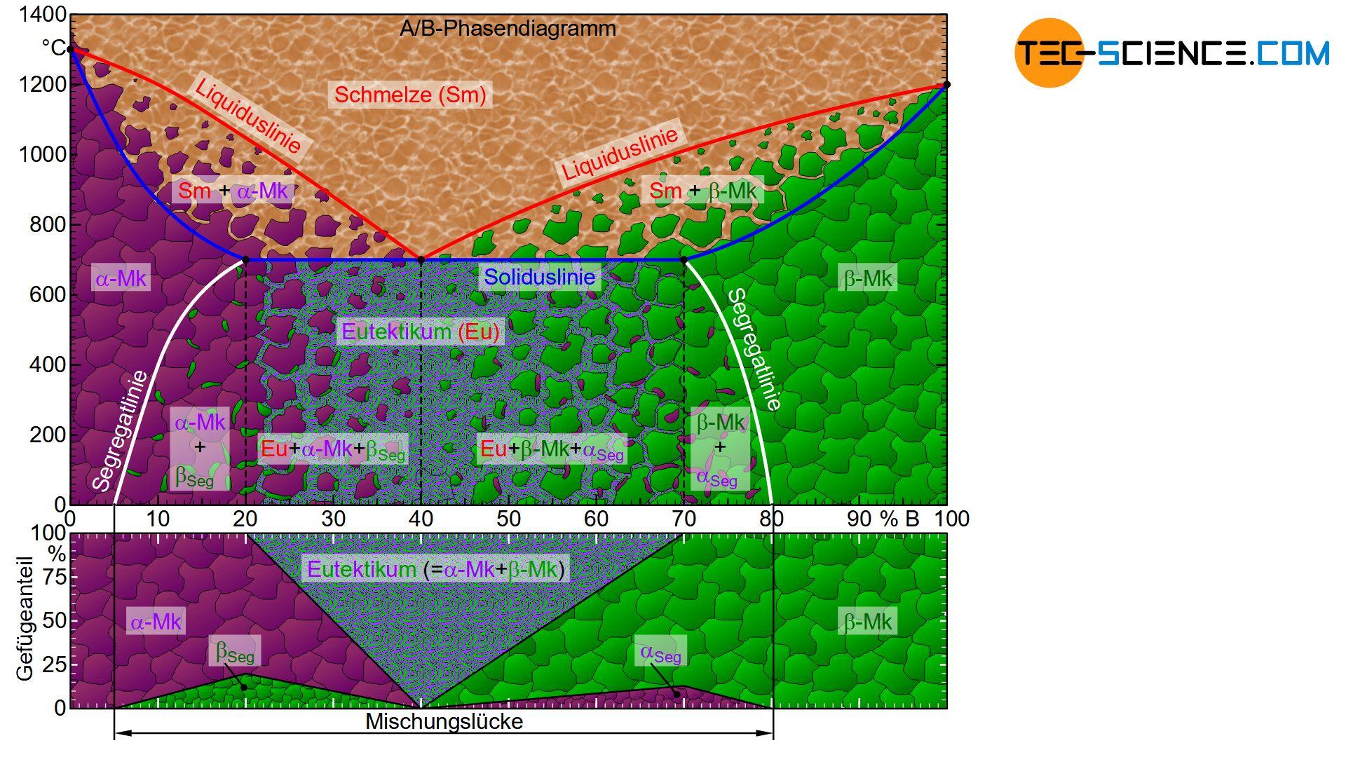 Phasendiagramm und Gefügediagramm eines Legierungssystems mit begrenzter Löslichkeit der Komponenten