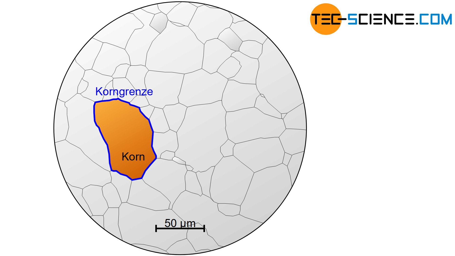 Schematisches Gefügebild eines polykristallinen Werkstoffes