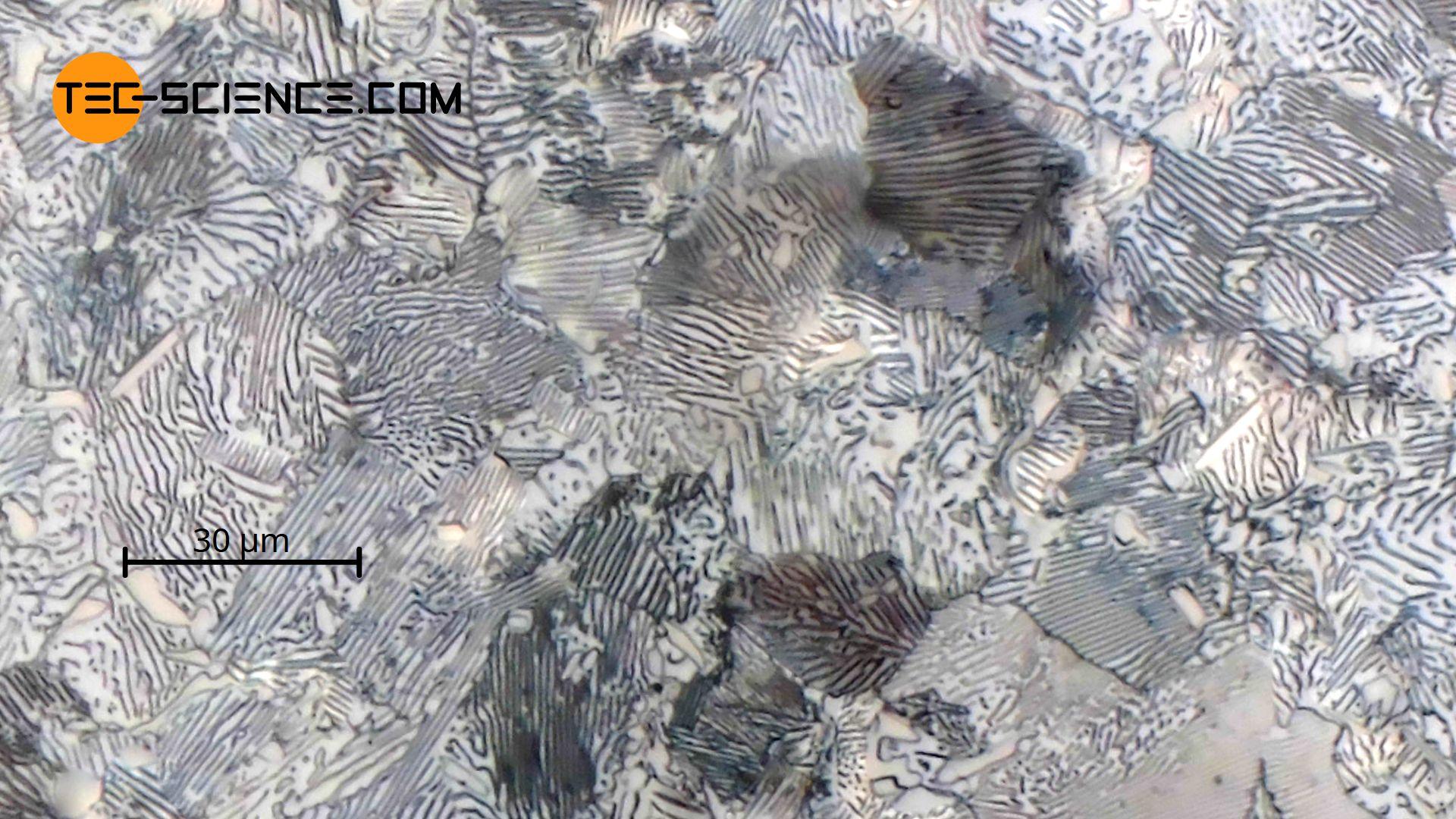 Gefügebild von eutektoidem Stahl mit einem Kohlenstoffgehalt von 0,8 % (C80)