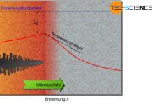 Dendritisches Kristallwachstum (Keimwachstum)