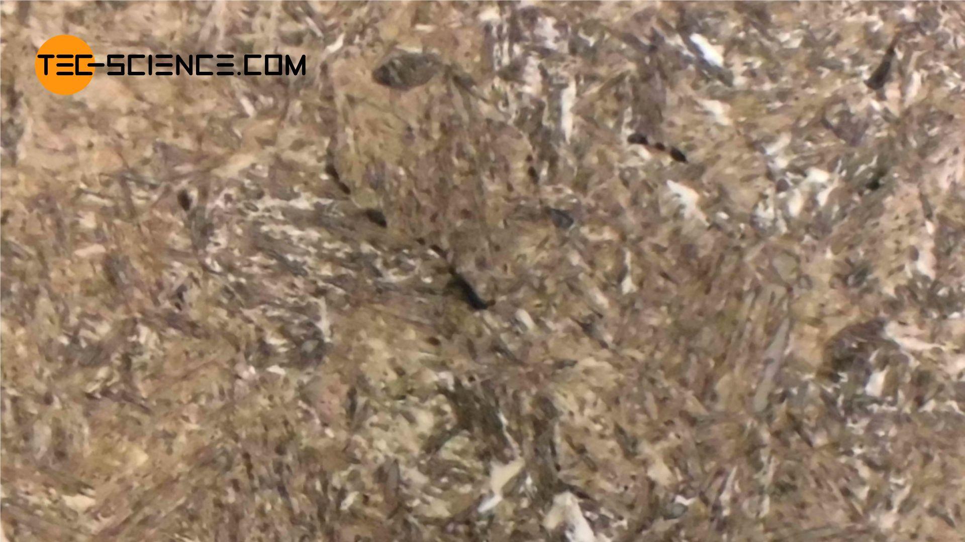 Schliffbild eines gehärteten Stahls (C45)
