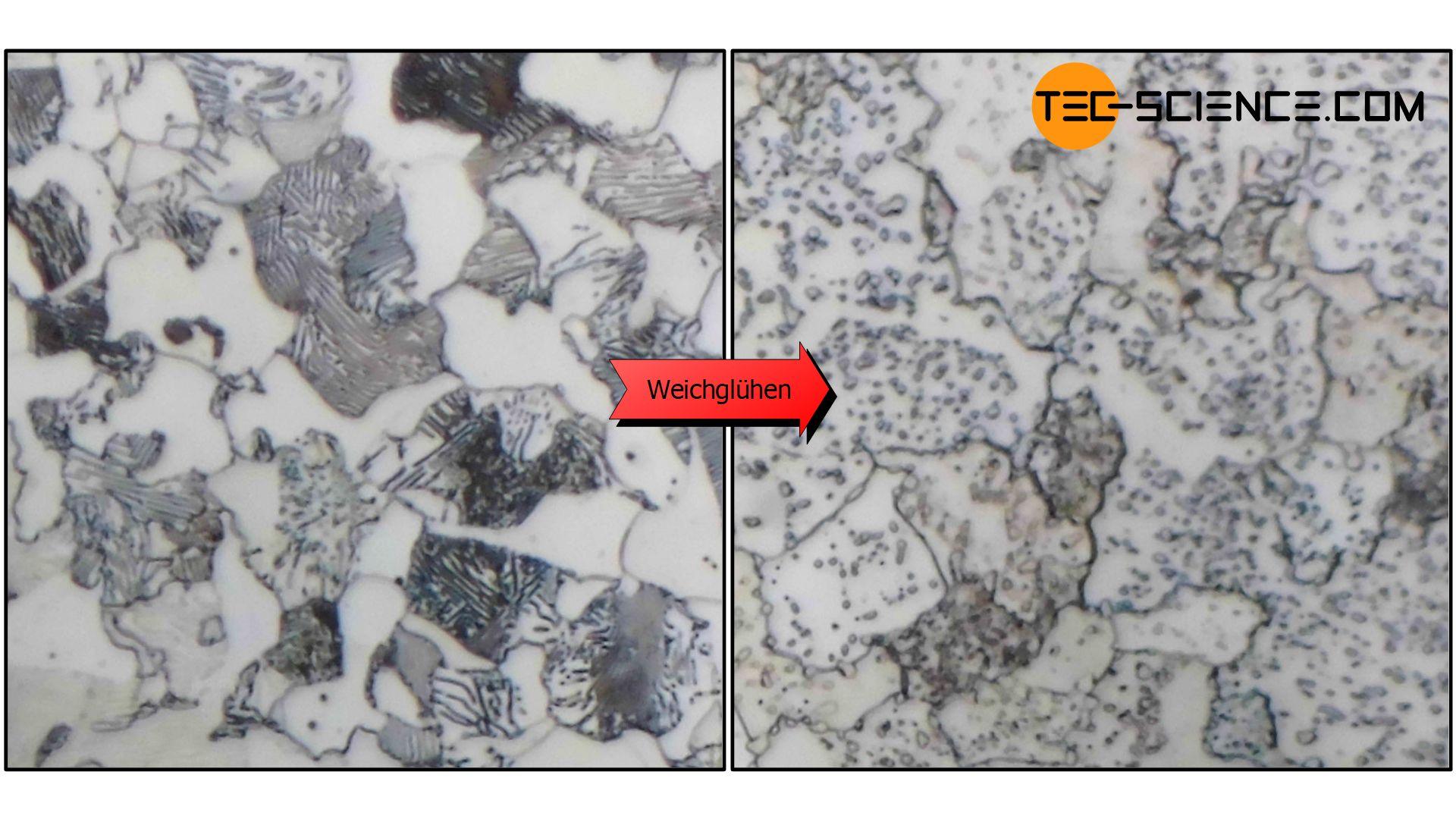 Schliffbild eines weichgeglühten Stahls (C45)