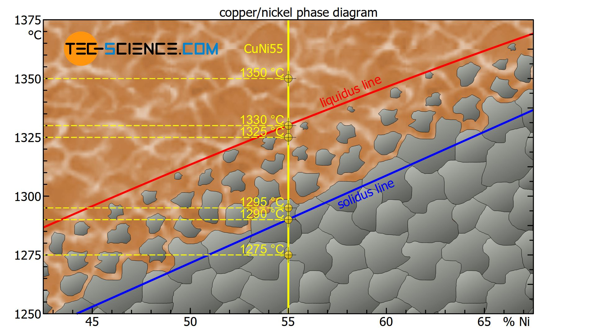 Reading the phase diagram of an alloy system with complete solubility of the components (solid solution)