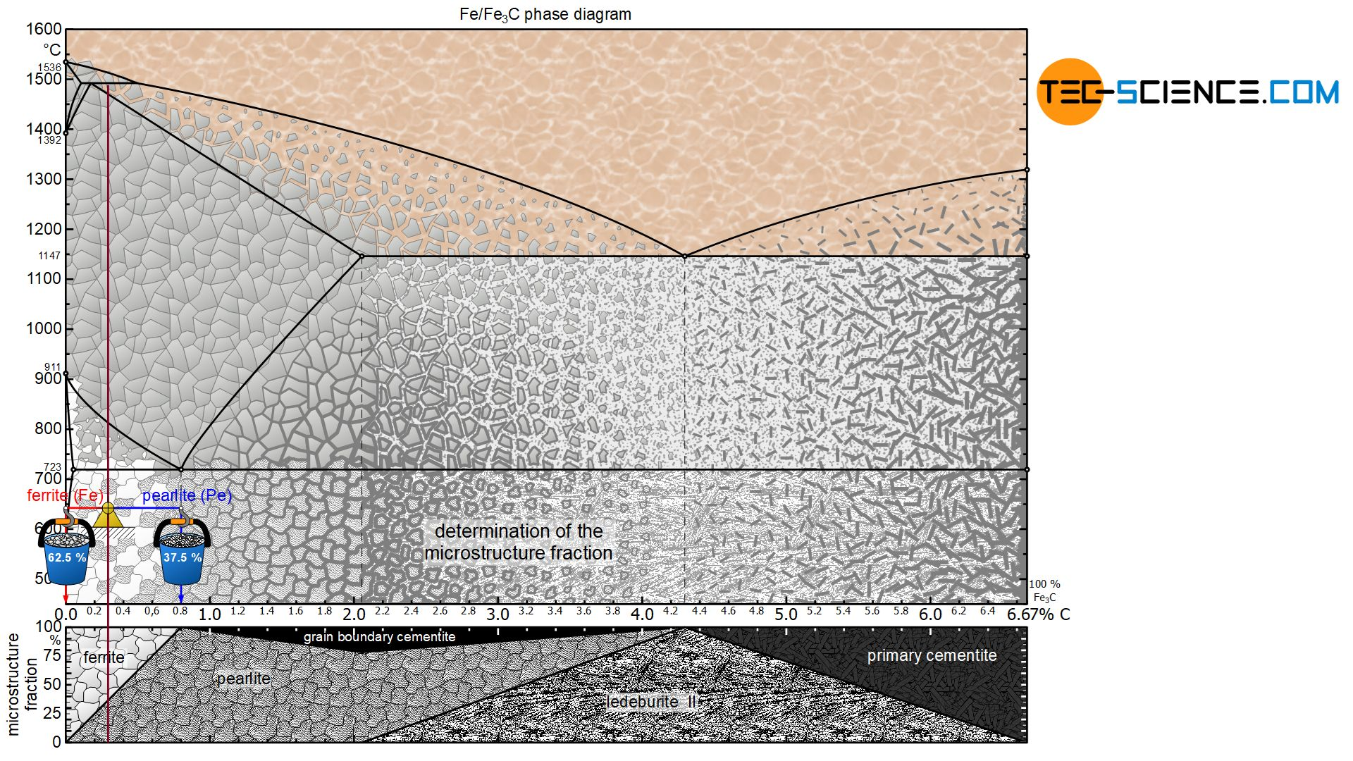 Determination of the microstructure fractions of a hypoeutectoid steel