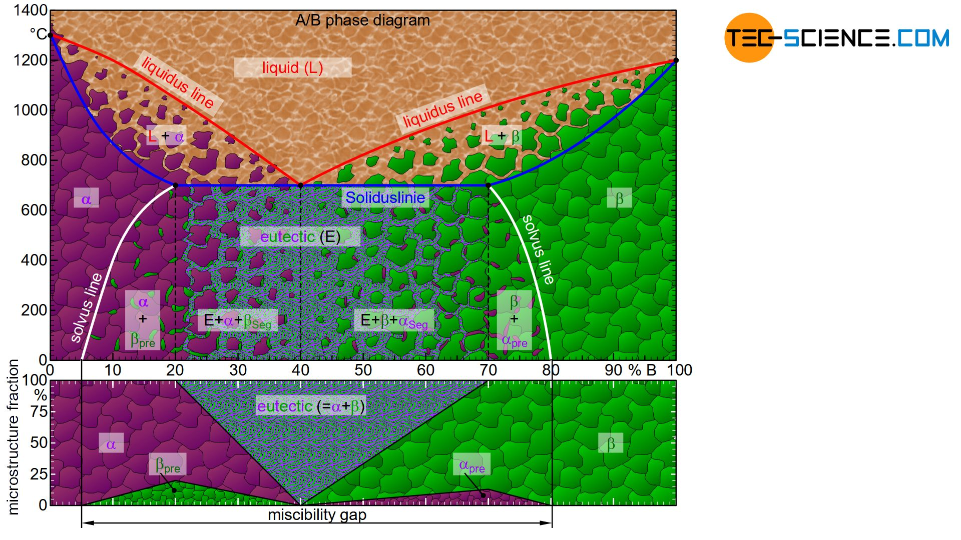 Phase diagram and microstructure diagram of an alloy system with limited solubility of the components
