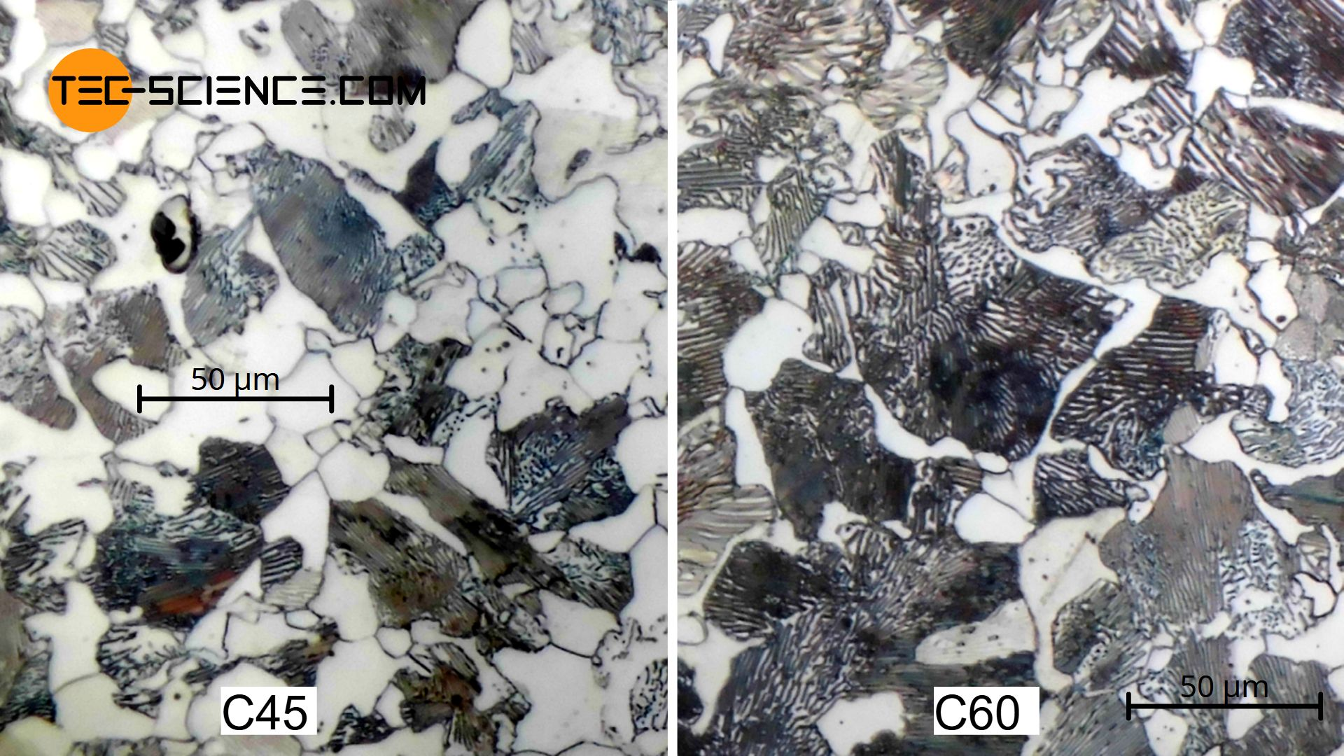 Micrograph of hypoeutectoid steel with a carbon content of 0.45 (C45) and 0.6 % (C60)