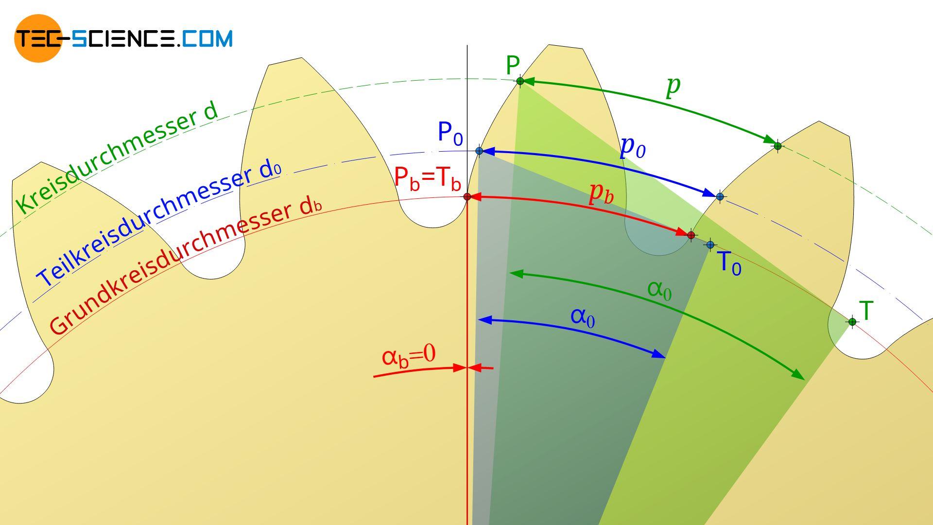 Berechnung der Teilung