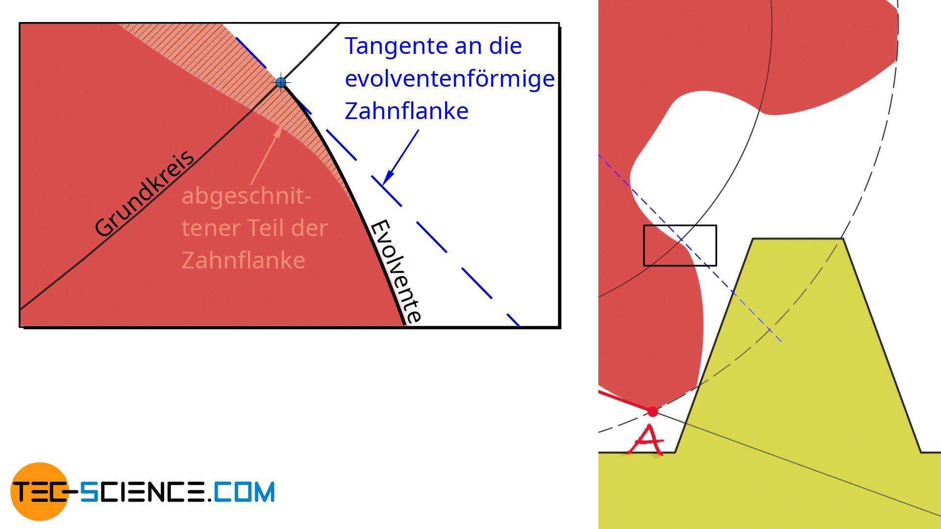 Abschneiden eines Teils der Zahnflanke durch den Unterschnitt