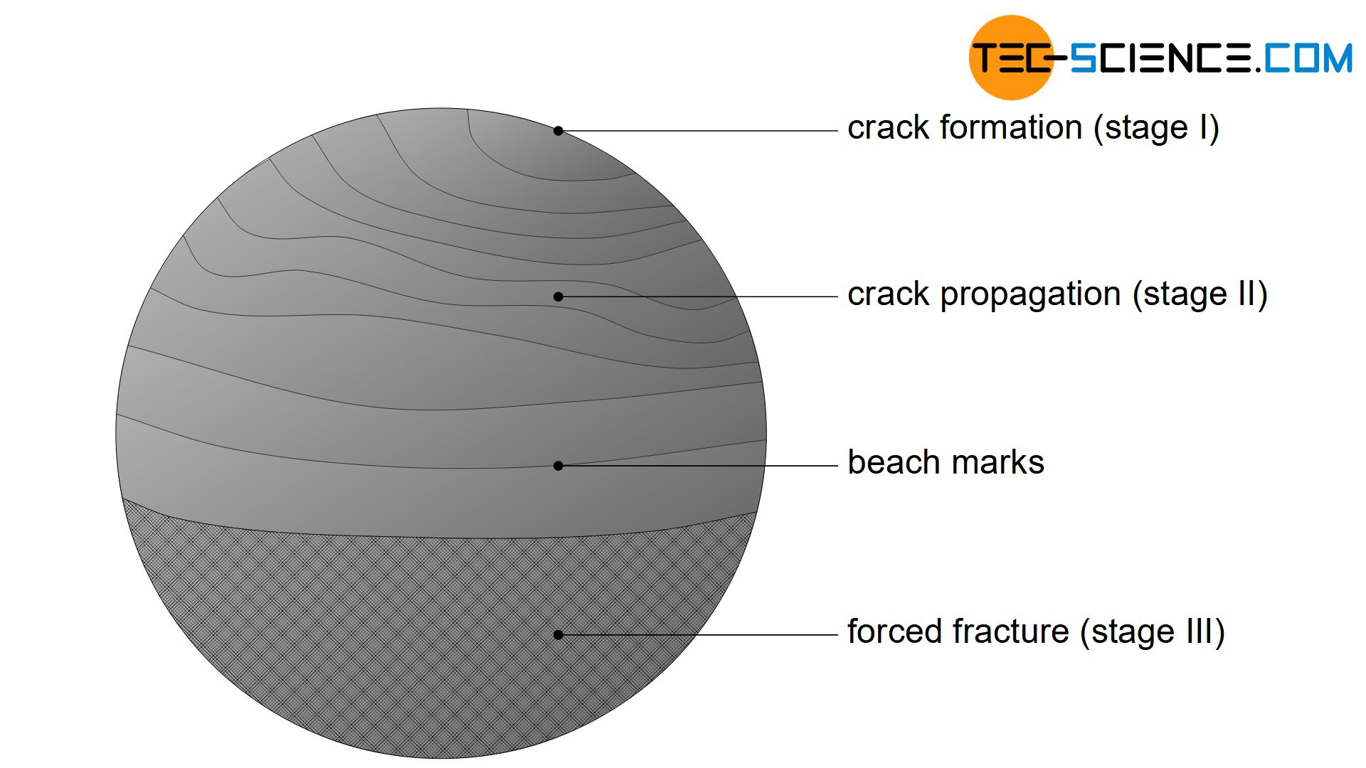 Surface of a fatigue fracture