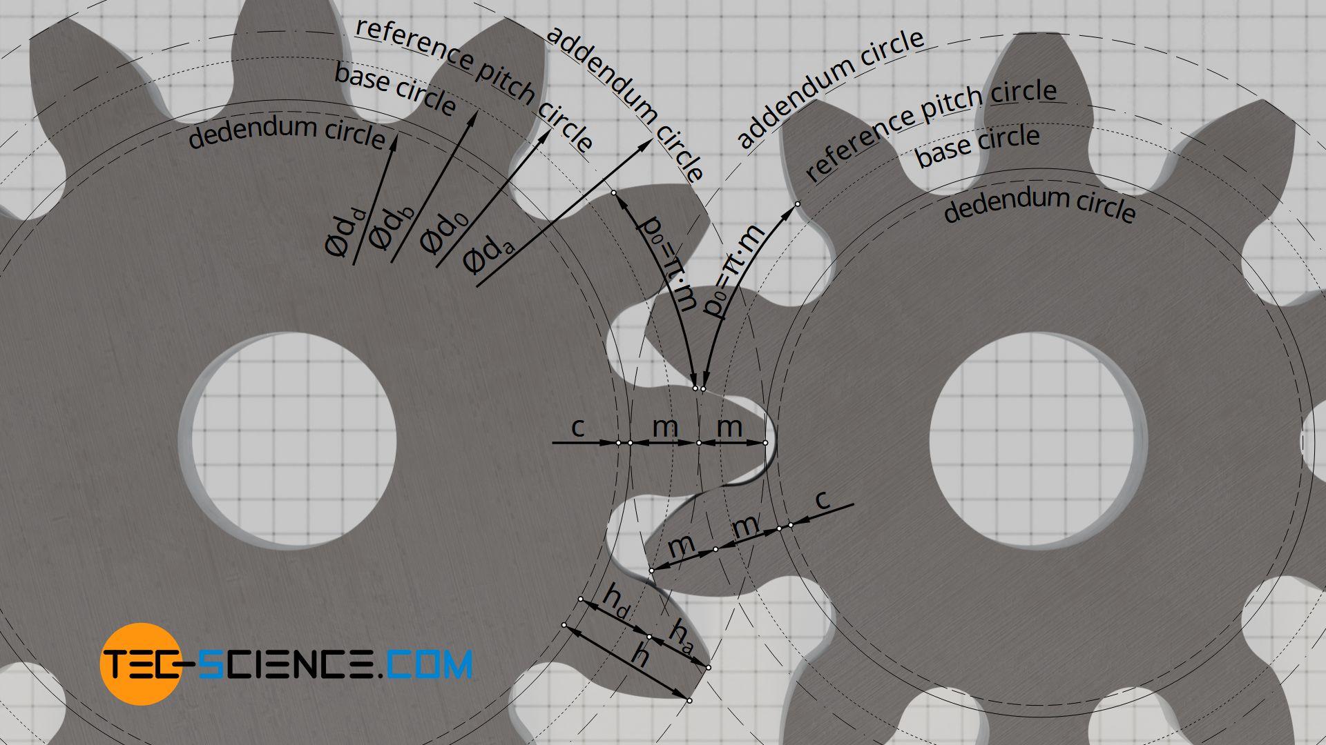 Geometry of an involute gear
