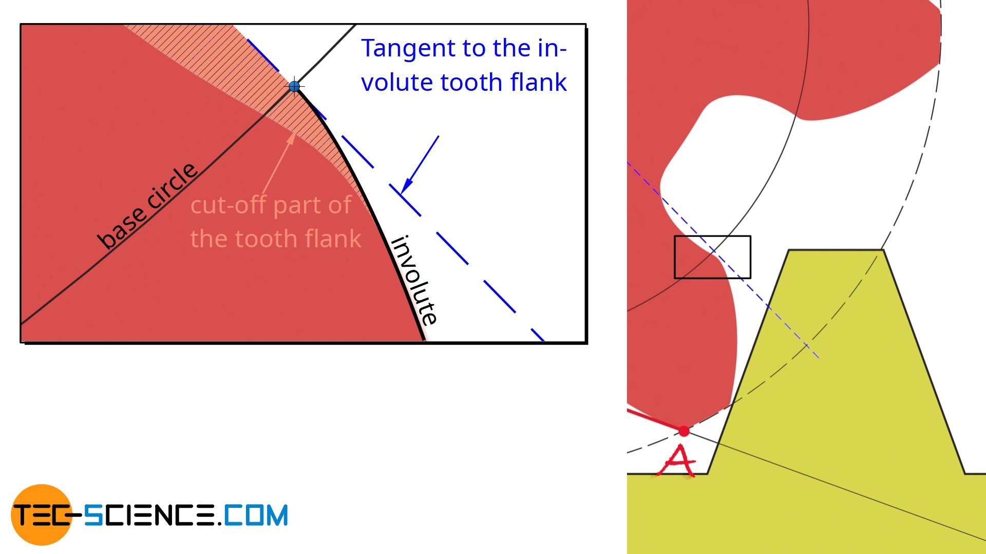 Cutting off a part of the tooth flank due to the undercut