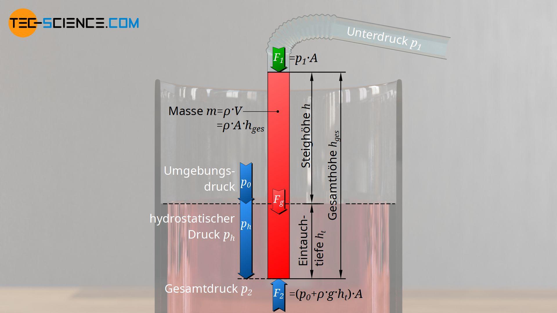 Einfluss der Eintauchtiefe auf die maximale Saughöhe