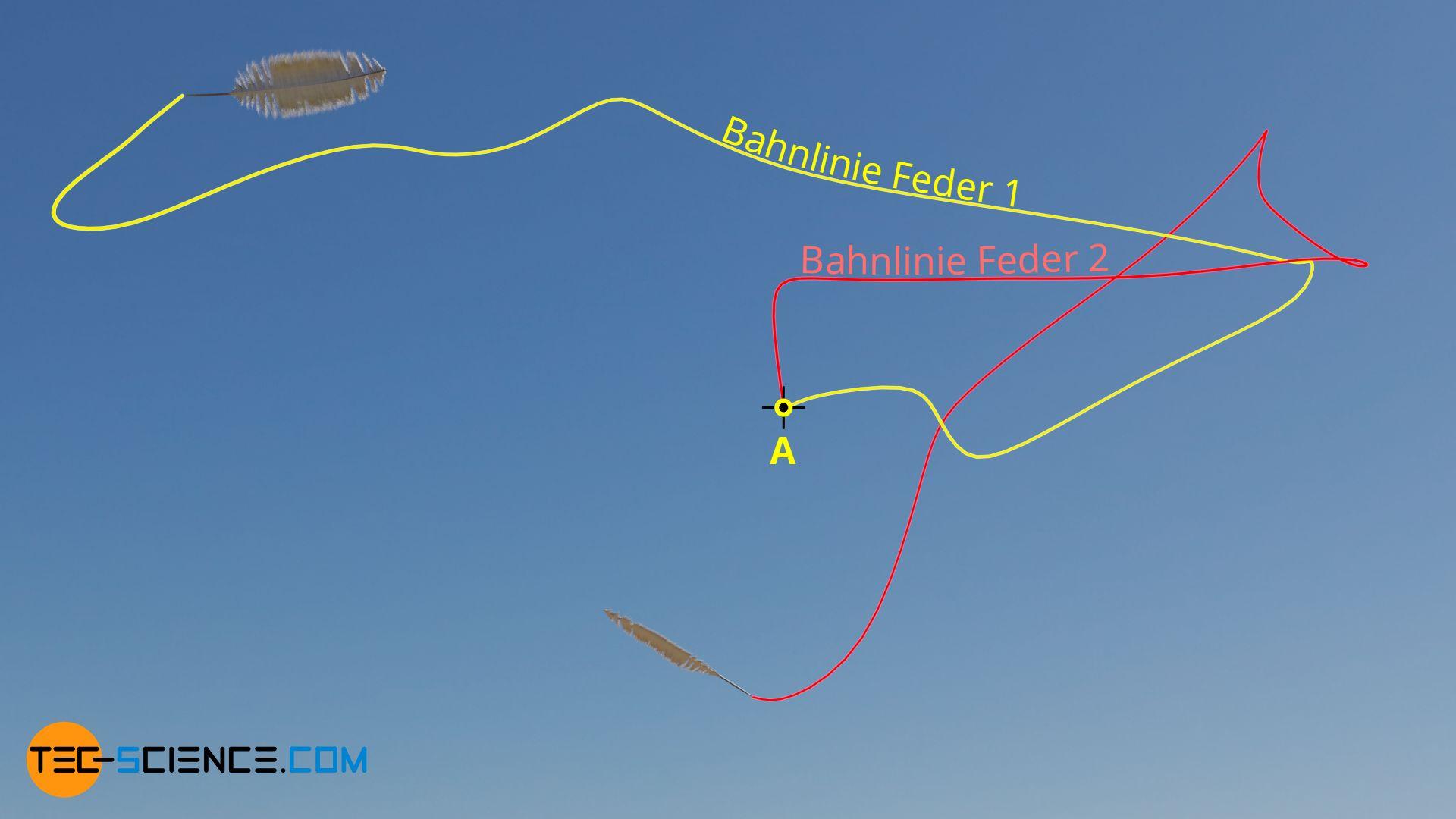 Bahnlinien (Bahnkurven) zweier Federn in einer instationären Luftströmung
