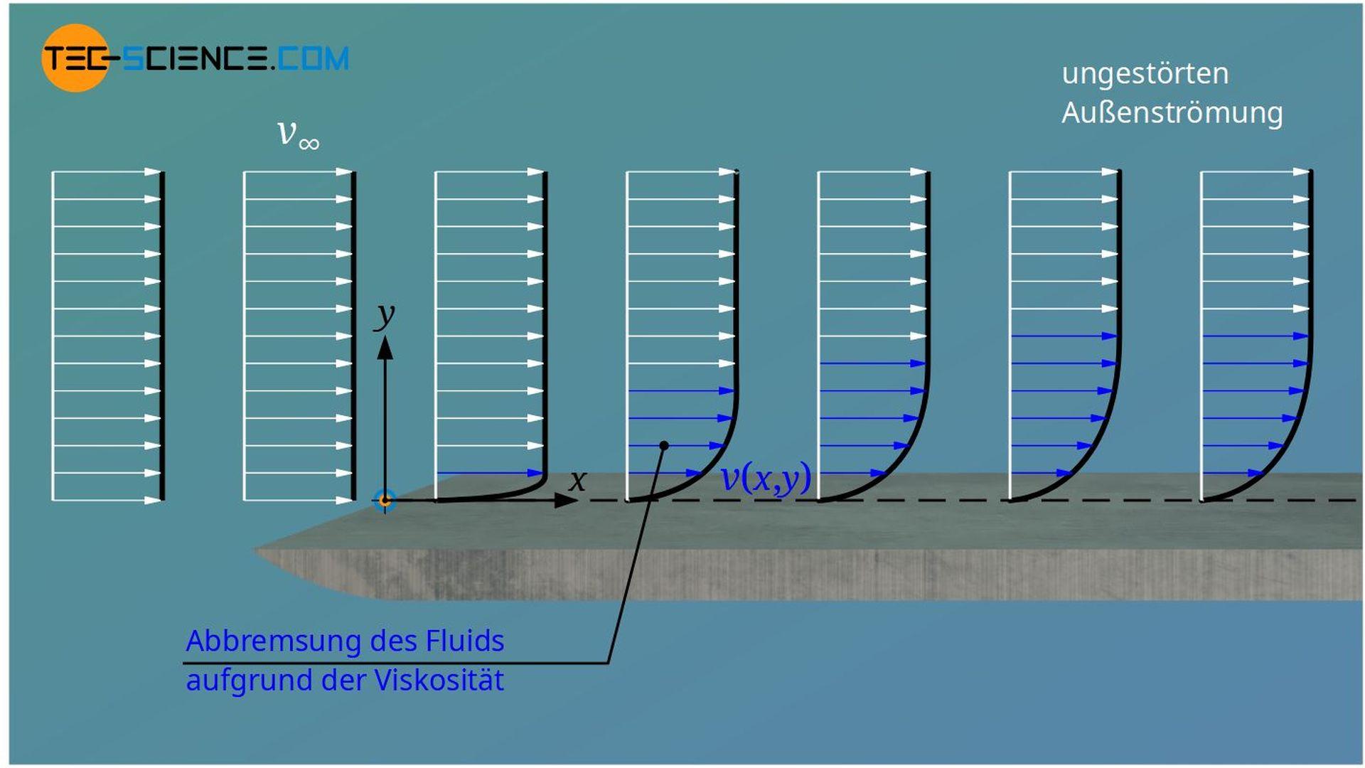 Abbremsung der Fluidschichten verursacht von Schubspannungen aufgrund der Viskosität des Fluids