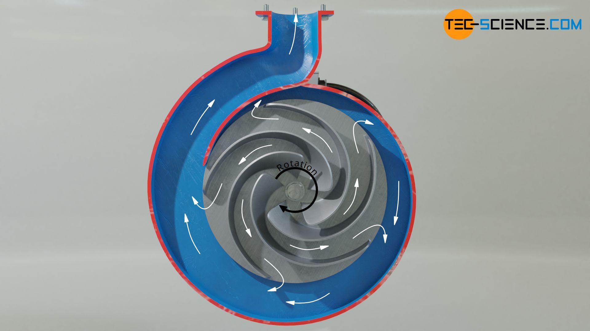 Laufrad einer Kreiselpumpe