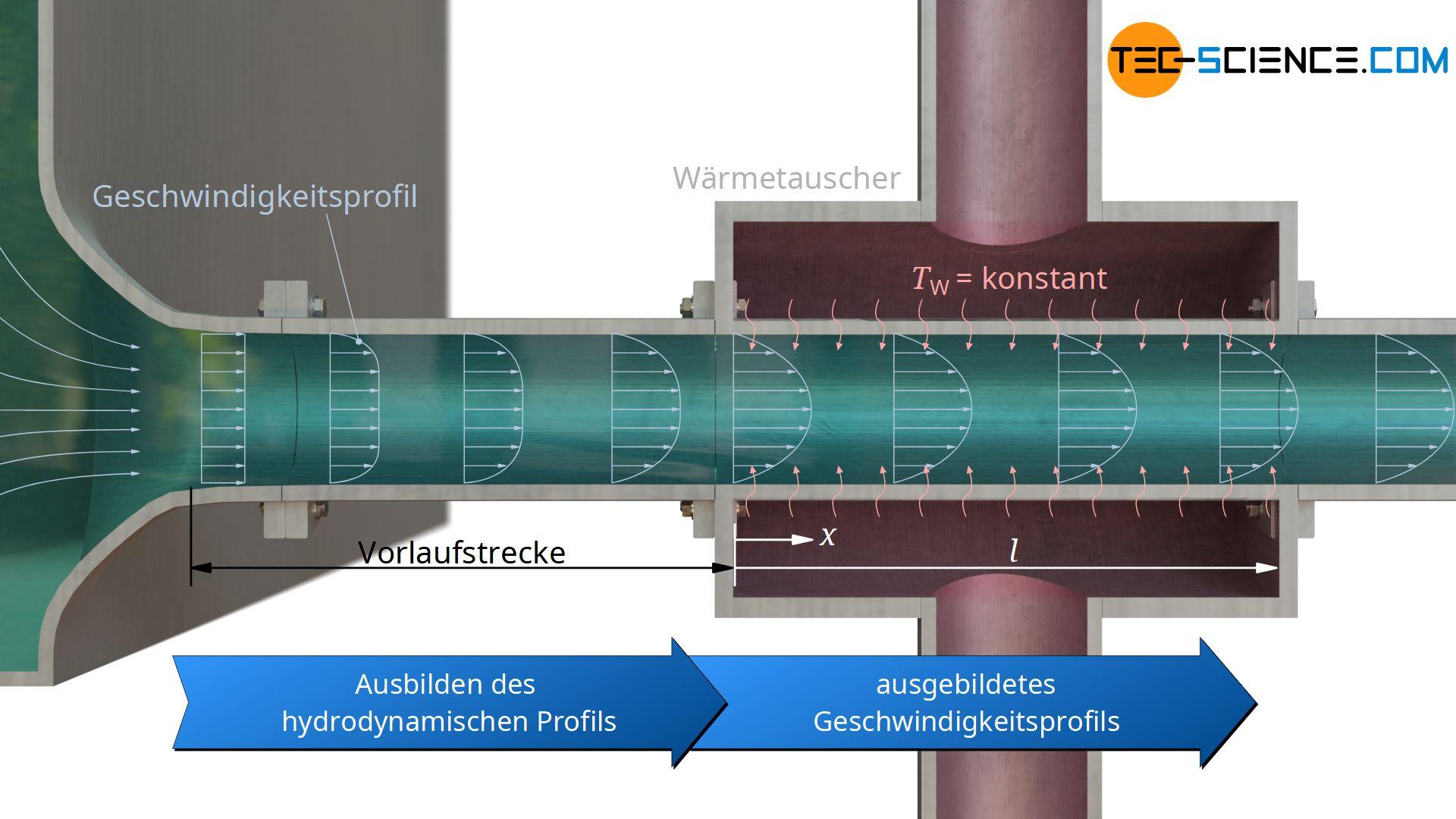 Konvektiver Wärmeübergang bei hydrodynamisch ausgebildeter Strömung (Geschwindigkeitsprofil) und konstanter Wandtemperatur