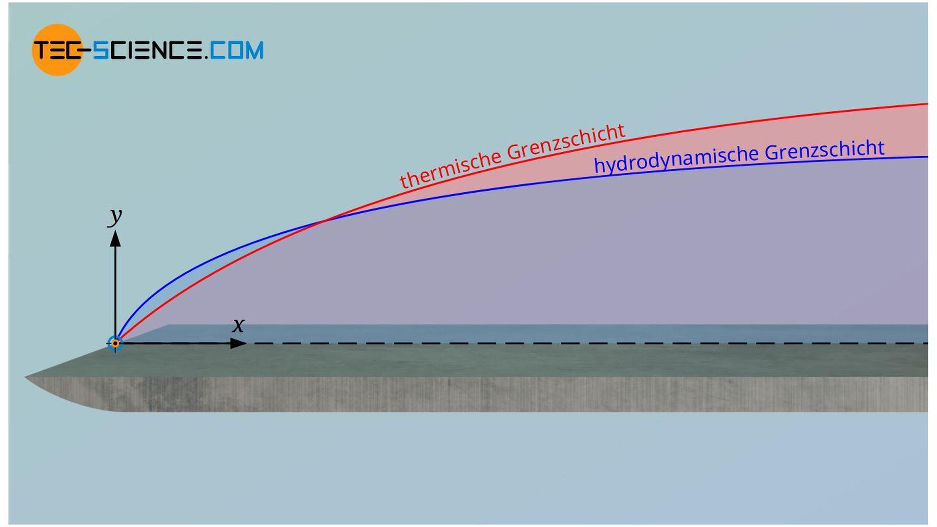 Hydrodynamische und thermische Grenzschicht der Strömung über eine ebene Platte