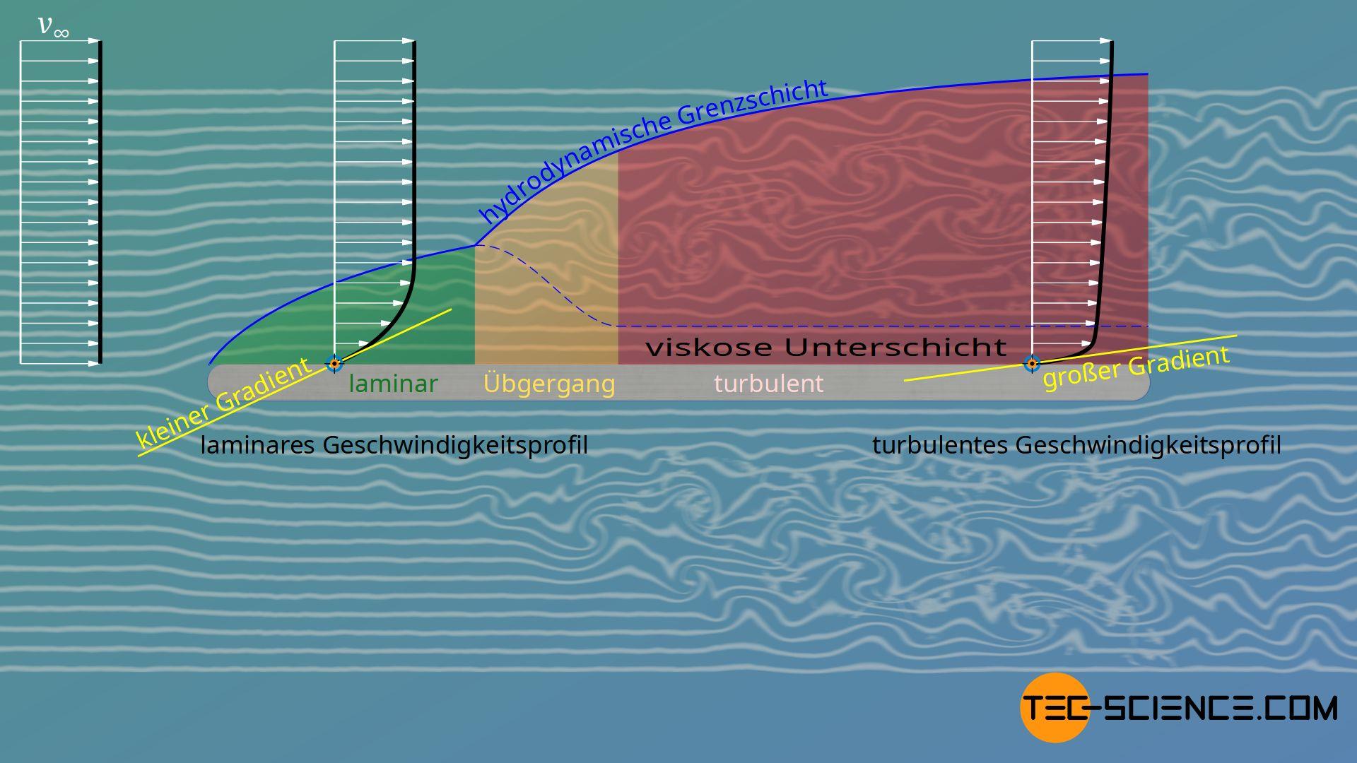 Geschwindigkeitsgradienten in einer laminaren und turbulenten Grenzschicht