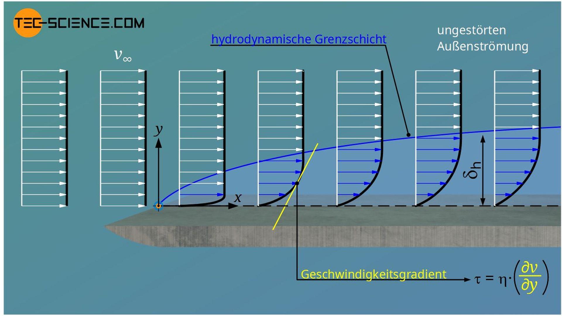 Hydrodynamischen Grenzschicht (Geschwindigkeitsgrenzschicht)