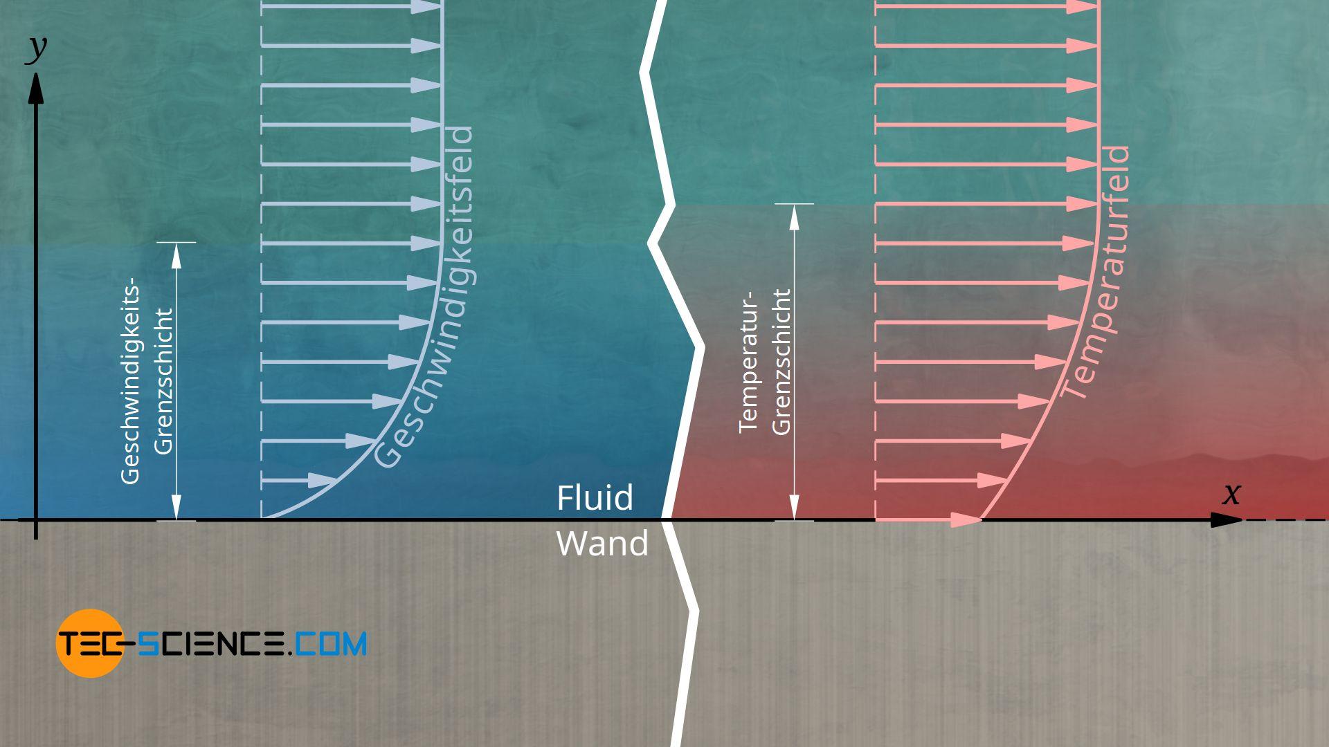 Hydrodynamische und thermische Grenzschicht, Geschwindigkeitsgrenzschicht, Temperaturgrenzschicht