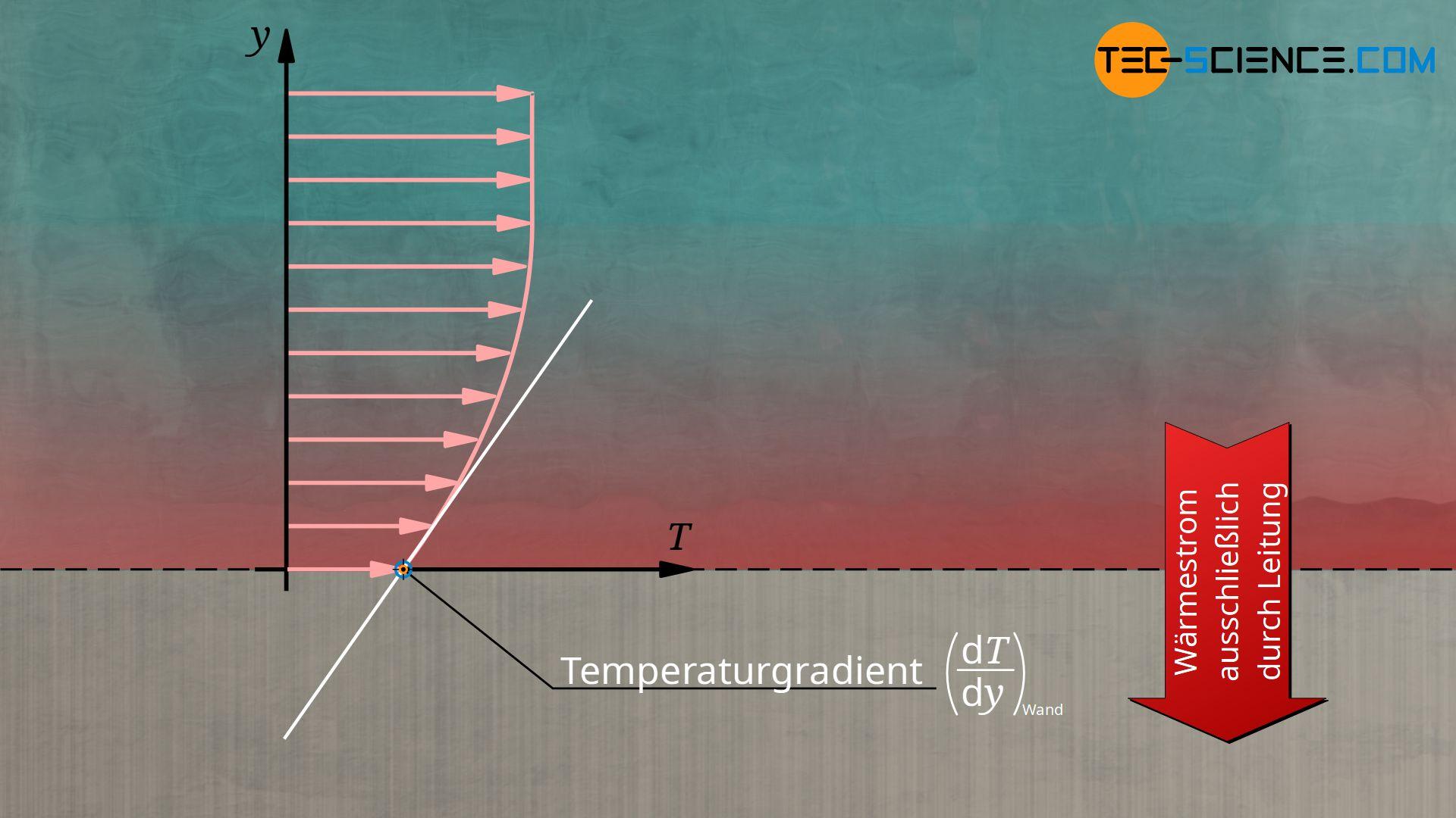 Wärmetransport an der Wand ausschließlich durch Wärmeleitung