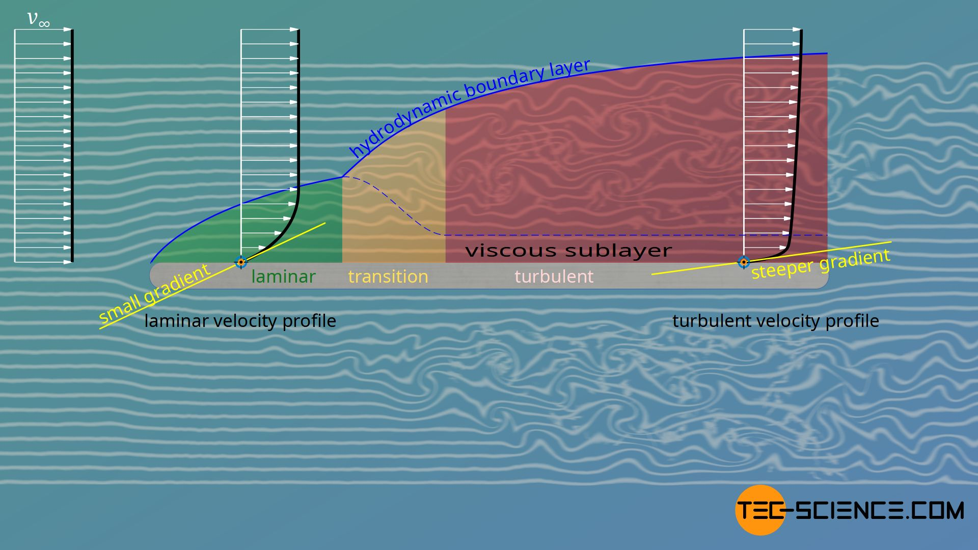 Velocity gradients in a laminar and turbulent boundary layer