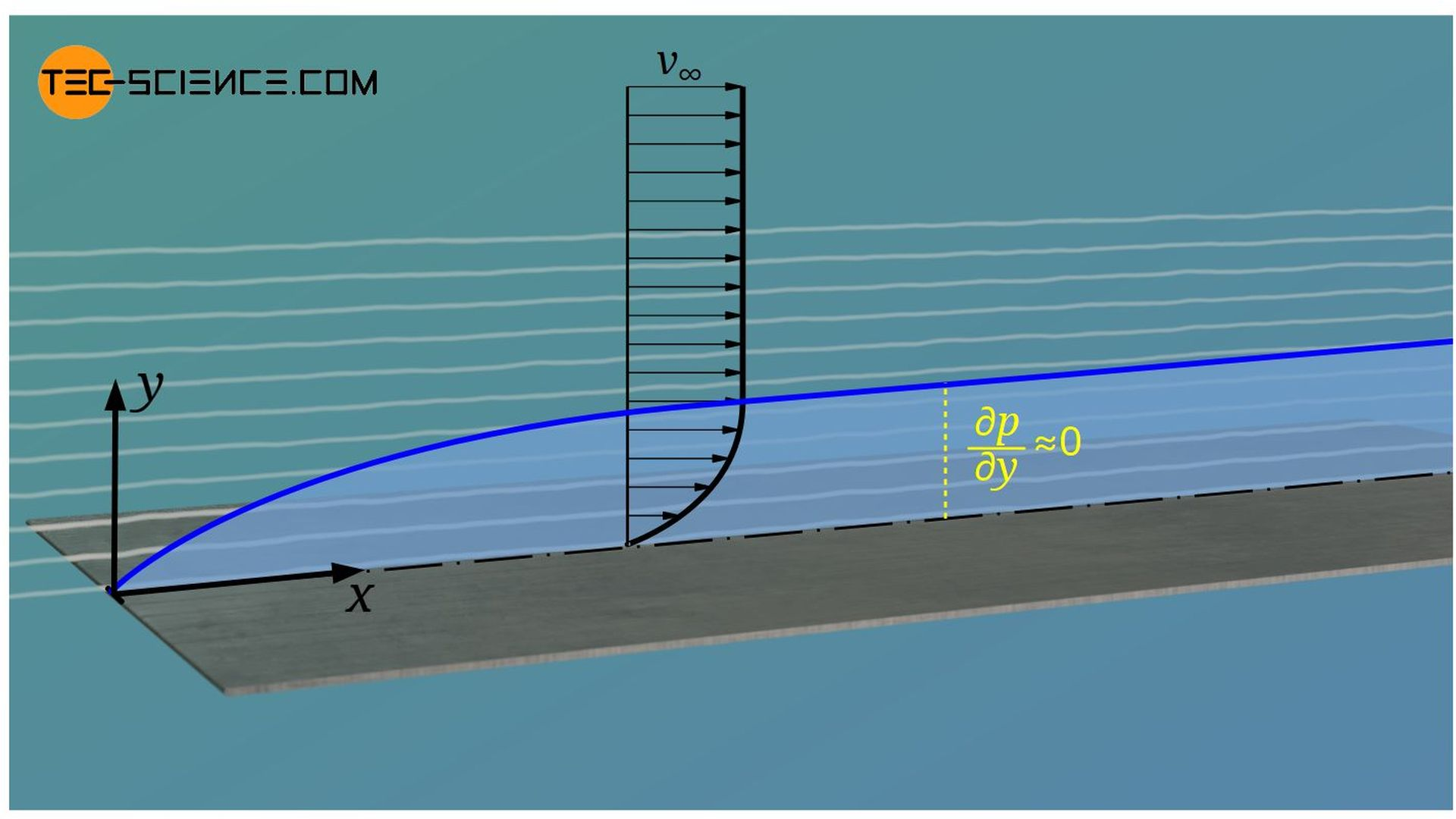 Pressure gradient in the hydrodynamic boundary layer perpendicular to the plate