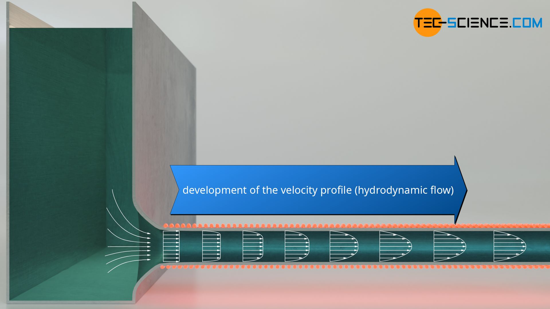 Development of the velocity profile (hydrodynamic flow profile)
