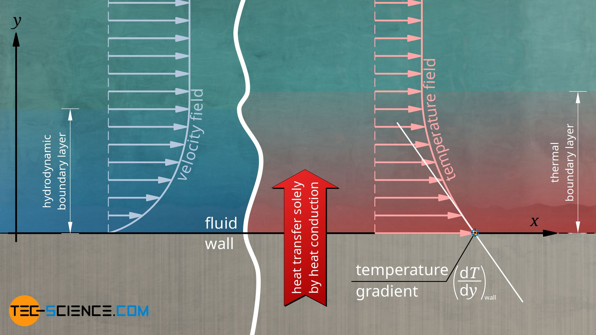 Influence of the hydrodynamic and thermal boundary layer on convective heat transfer
