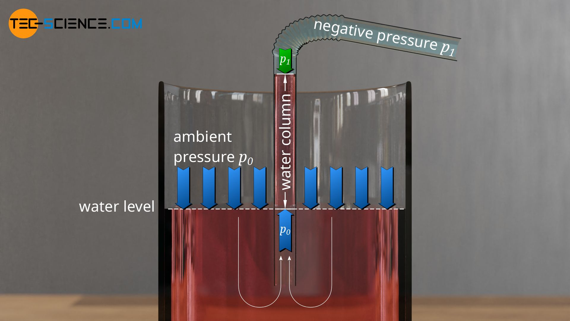 Pressing up the water by the ambient pressure