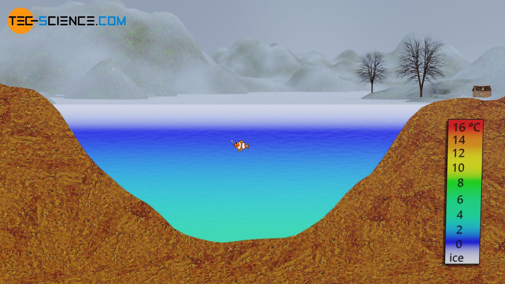 Temperaturschichtung eines Sees im Winter