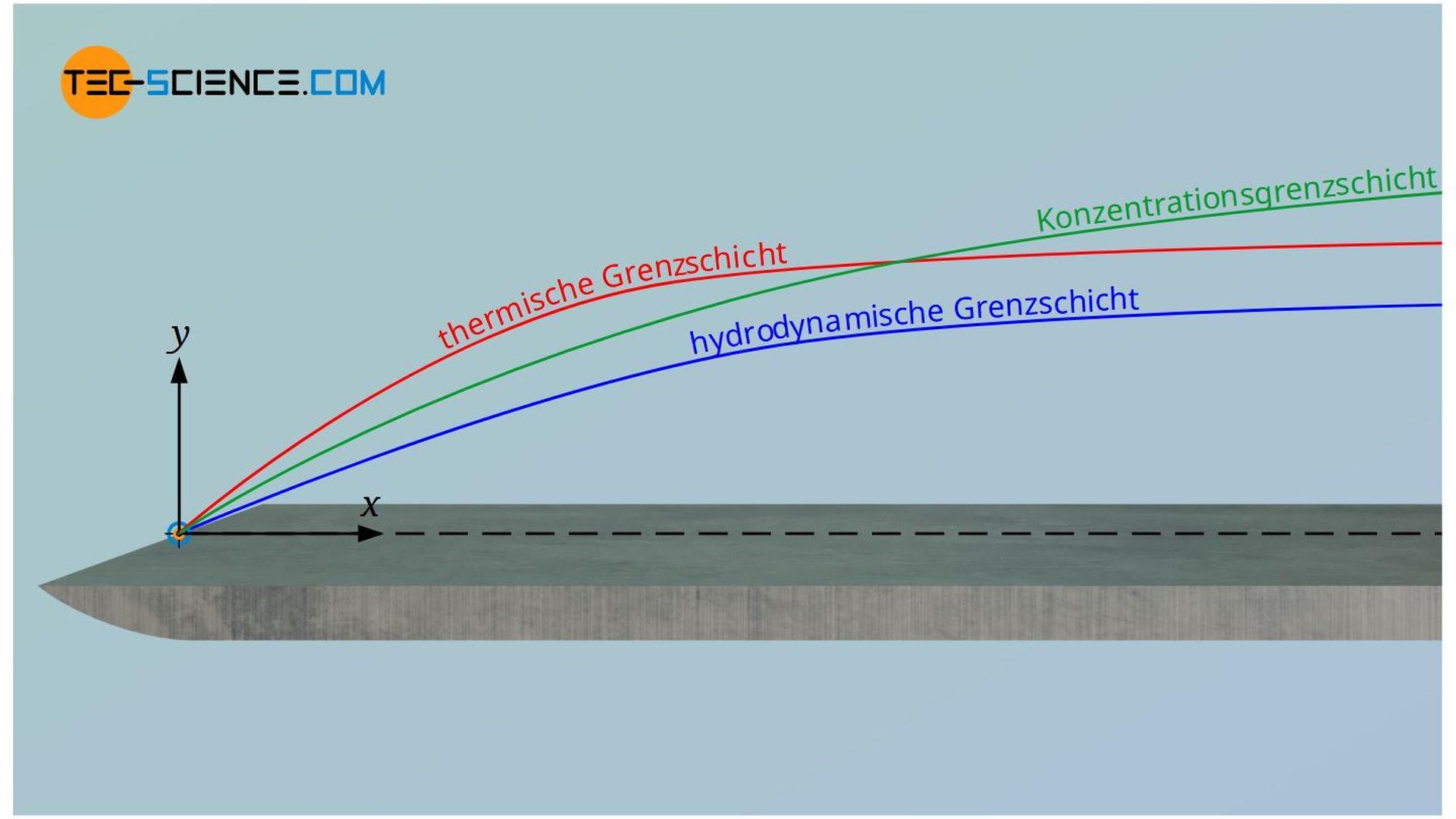 Hydrodynamische Grenzschicht, thermische Grenzschicht und Konzentrationsgrenzschicht