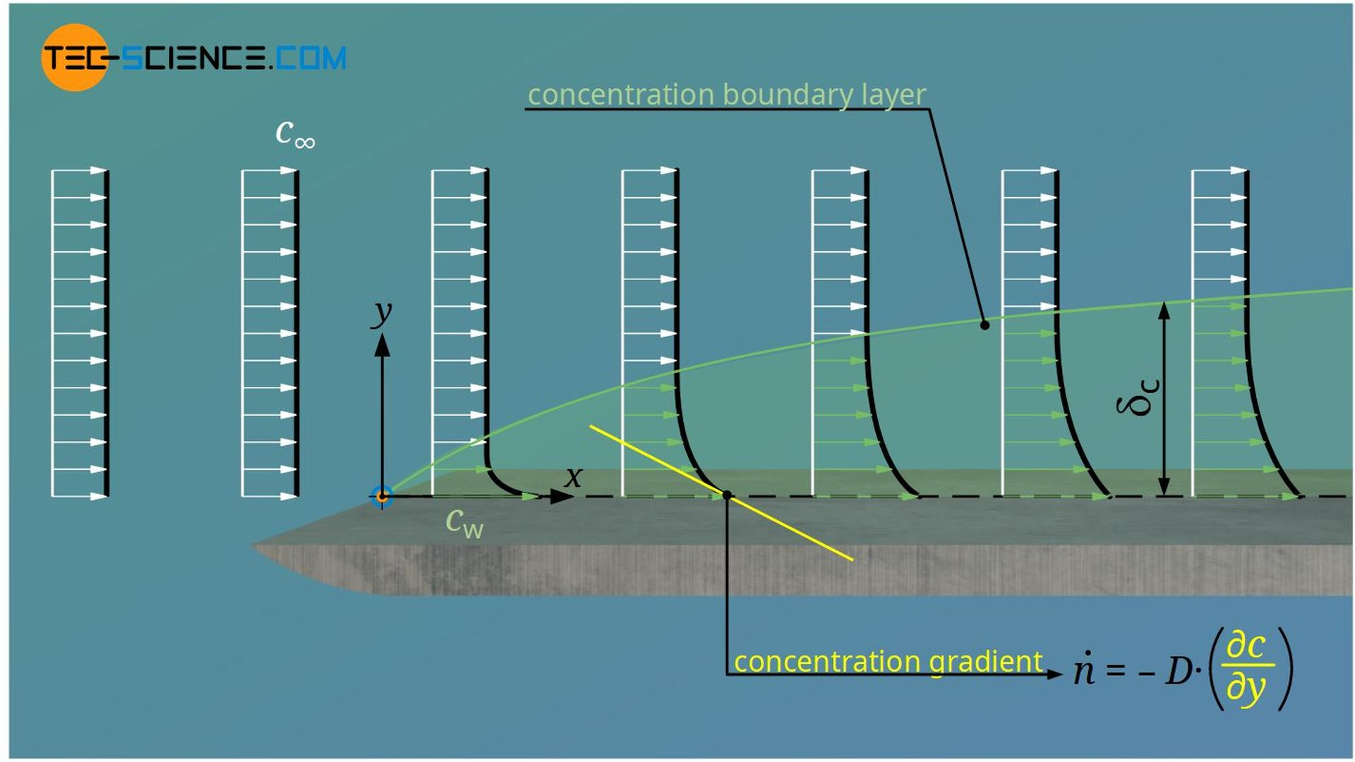 Definition of the concentration boundary layer (substance boundary layer)